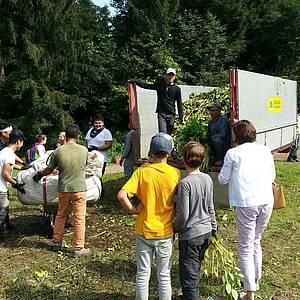 © Matthias Karadar. Neophytenbekämpfung mit der NMS St. Johann mit 200 SchülerInnen und einer Gruppe Asylwerber